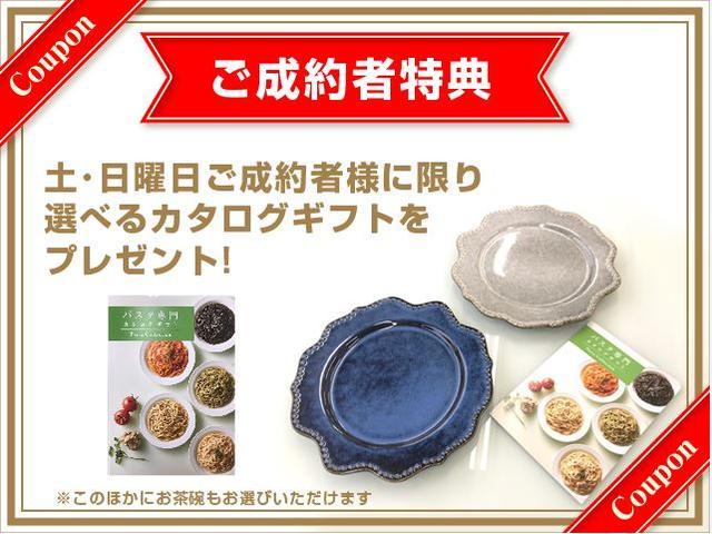 カスタムX トップエディションVS SAIII(2枚目)