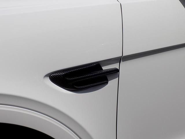 ベースグレード D車左H ツーリング&カーボンスタイリング&マリーナドライビングスペック SR MANSORYカーボンボンネット Precisione24inAW STARTECHマフラー 電動サイドステップ 黒革(50枚目)