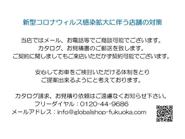 カスタム RS ハイパーSAIII オプションカラー(2枚目)