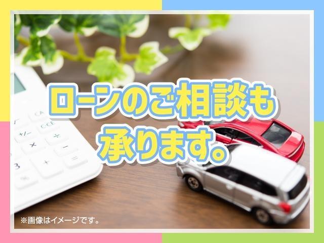 30G 4WD 純正ナビ バックカメラ フリップダウン(66枚目)