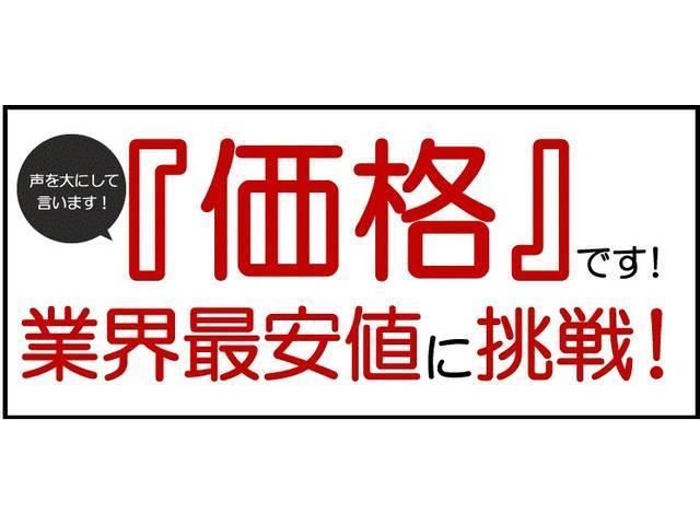 TX Lパッケージ サンルーフ 電動本革シート 社外SDナビ(69枚目)