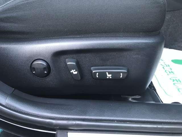 250G Sパッケージリラックスセレクション メモリーナビ(12枚目)