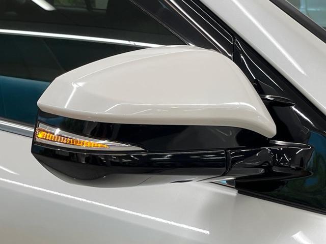 プレミアム 後期型 10型BIG-X セーフティセンス インテリジェントクリアランスソナー シーケンシャルLEDヘッドランプ バックカメラ 電動リアゲート 純正18アルミ レーダークルーズ パワーシート ETC(29枚目)