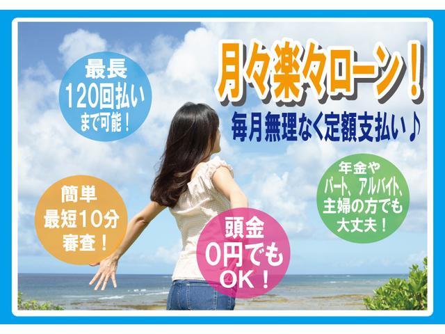 ライダーS ツインナビ パワスラ サイド&バックカメラ(4枚目)
