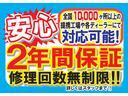 ライダーS ツインナビ パワスラ サイド&バックカメラ(7枚目)