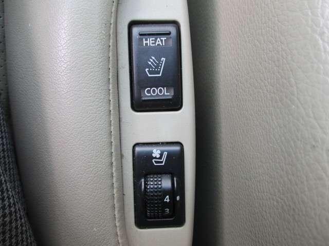 300G・車高調・35GTR純正20インチアルミ・本革シート(3枚目)