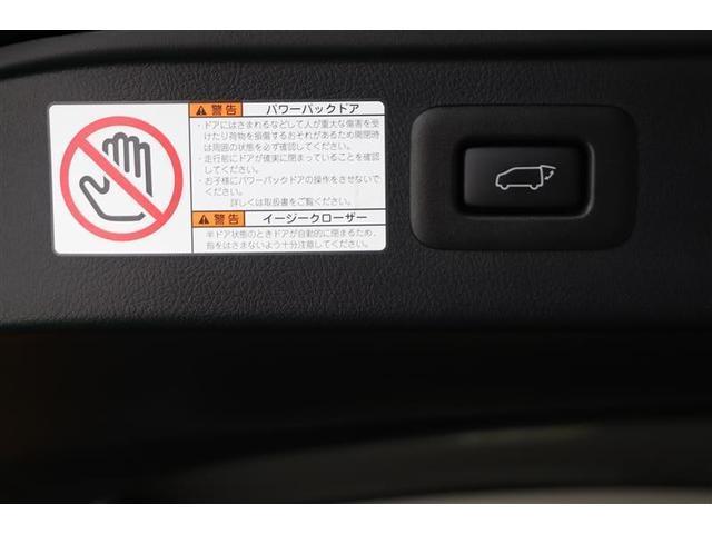 S Cパッケージ SDナビ フルセグ サンルーフ 2年保証(12枚目)
