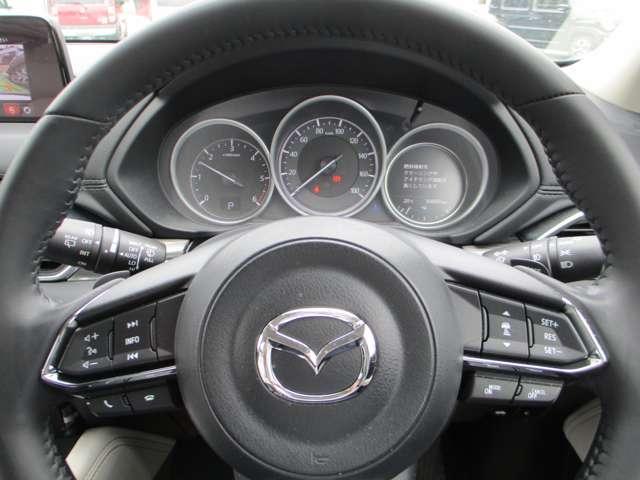 ハンドルの右側のスイッチはクルーズコントロール・左側のスイッチ類は音量調整などオーディオ系の操作に