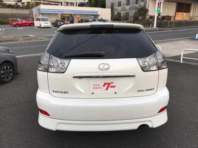 300G Lパッケージ エアロ ナビワンセグTV Bモニター(19枚目)
