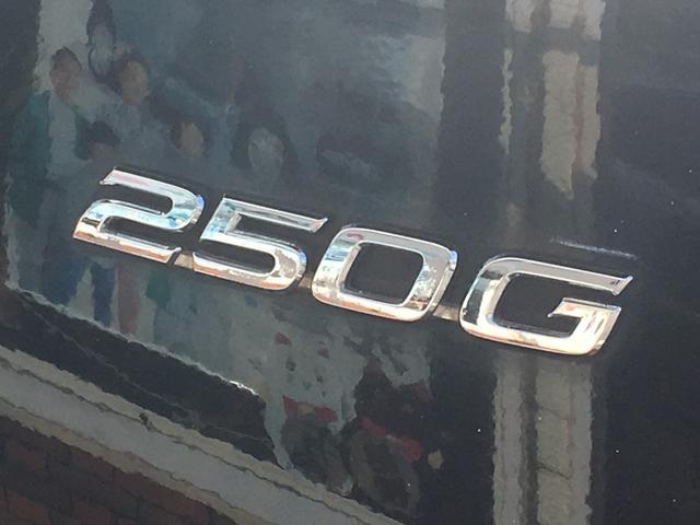 250G ヴェルティガ DVDナビ フルセグ ダウンサス(12枚目)