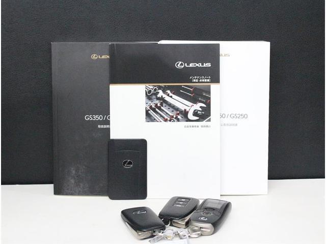 GS250 ヒョウジュン フルセグ付HDDナビ ワンオーナー(20枚目)
