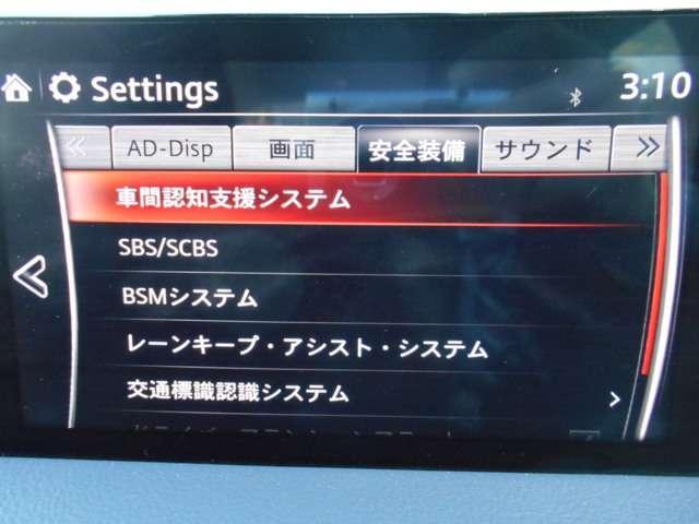 2.0 20S プロアクティブ ナビ CD DVD TV E(11枚目)