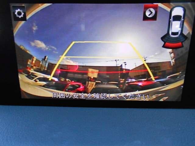 2.0 20S プロアクティブ ナビ CD DVD TV E(14枚目)