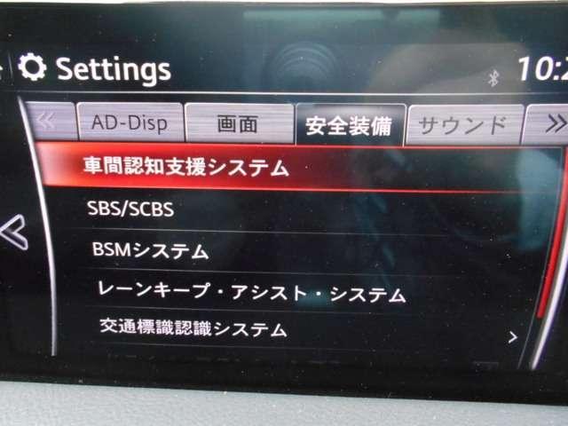 2.0 20S プロアクティブ ナビ バックカメラ ドラレコ(10枚目)