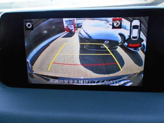 2.0 20S プロアクティブ 安全装備 ナビ Bカメラ T(11枚目)