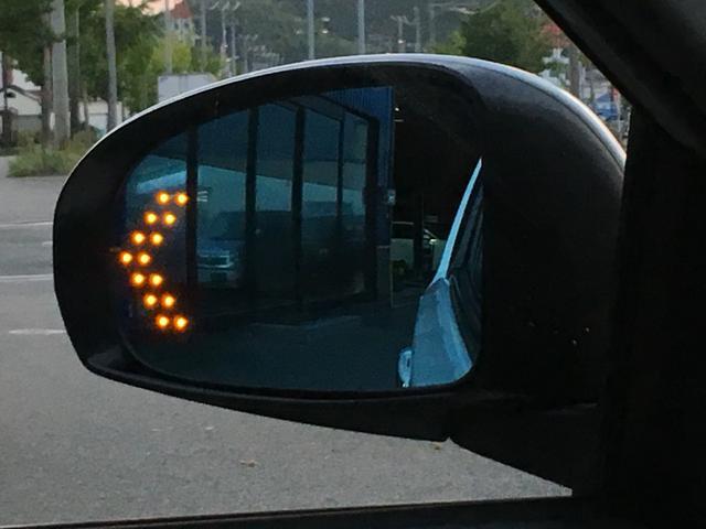 100G レザーパッケージ HIDライト・スマートキー・(16枚目)