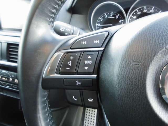 25S Lパッケージ 4WD ナビ フルセグTV ETC バックカメラ シートヒーター アイドリングストップ(15枚目)