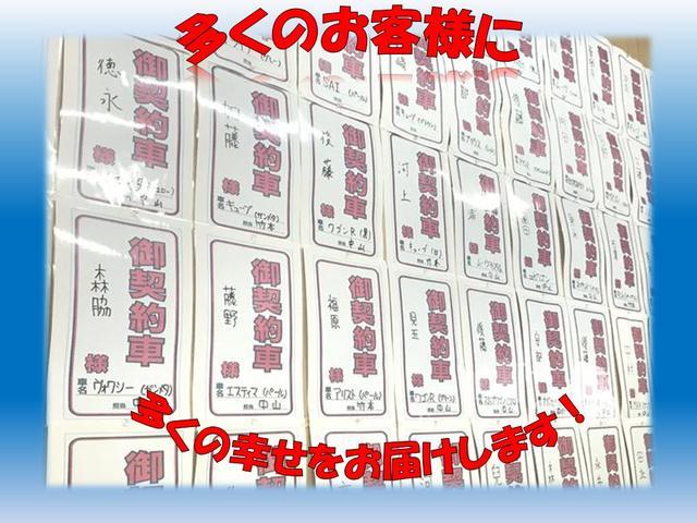 Sエディション エアロ 社外HDDナビ 18アルミ ETC(32枚目)