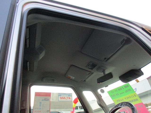 カスタム HYBRID XS 2型(31枚目)