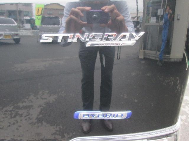 スティングレー HYBRID T 2型(50枚目)