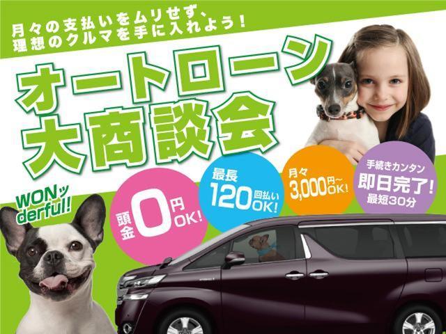 Gi プレミアムパッケージ 新車未登録 サンルーフ(19枚目)