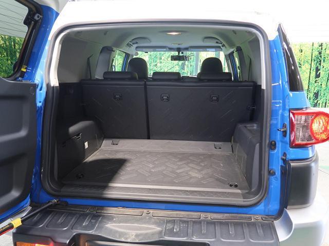 カラーパッケージ SDナビ 4WD クルーズコントロール(13枚目)