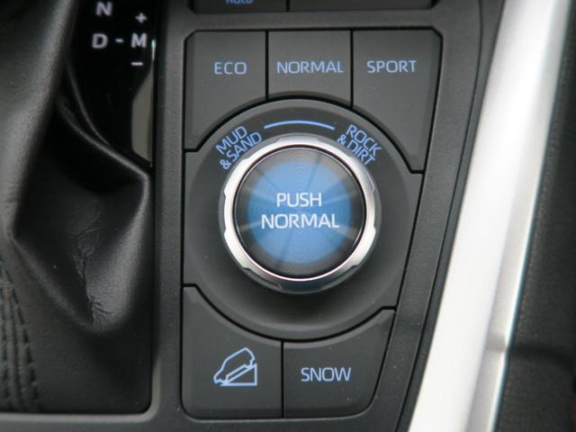 アドベンチャー オフロードパッケージ 登録済み未使用 特別仕様車 専用サスペンション ルーフレール 18インチAW レーダークルーズコントロール LEDヘッド 運転席パワーシート クリアランスソナー オートマチックハイビーム(48枚目)