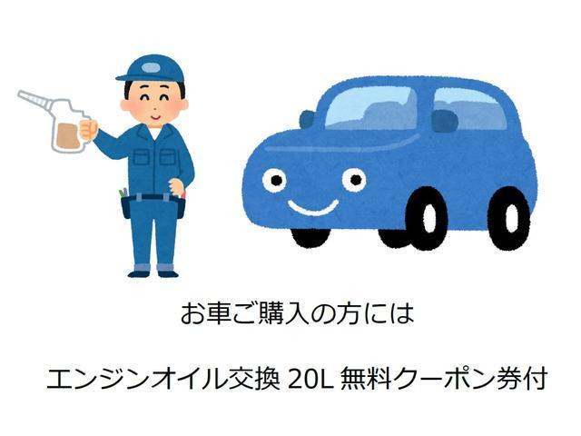 L ・ナビ・TV・ドアバイザー・フロアマット付・バックカメラ・保証書(44枚目)