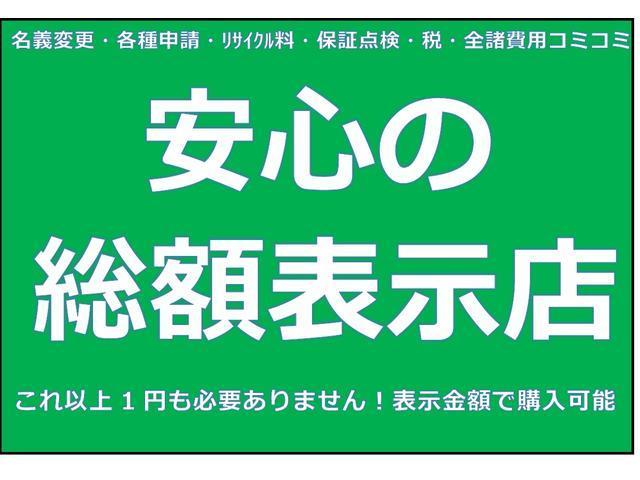 L ・ナビ・TV・ドアバイザー・フロアマット付・バックカメラ・保証書(45枚目)