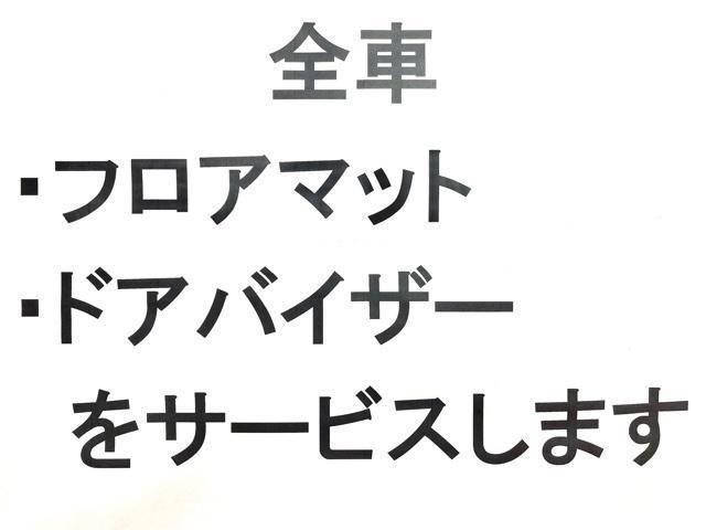 L ・ナビ・TV・ドアバイザー・フロアマット付・バックカメラ・保証書(47枚目)