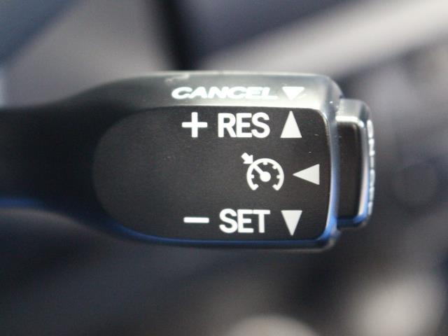ZS 煌 両側パワースライドドア メモリーナビ フルセグ スマートキー ETC バックモニター LED ワンオーナー(12枚目)
