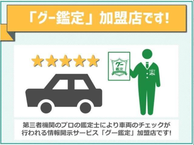 X SAIII 届出済未使用車 LEDライト(42枚目)