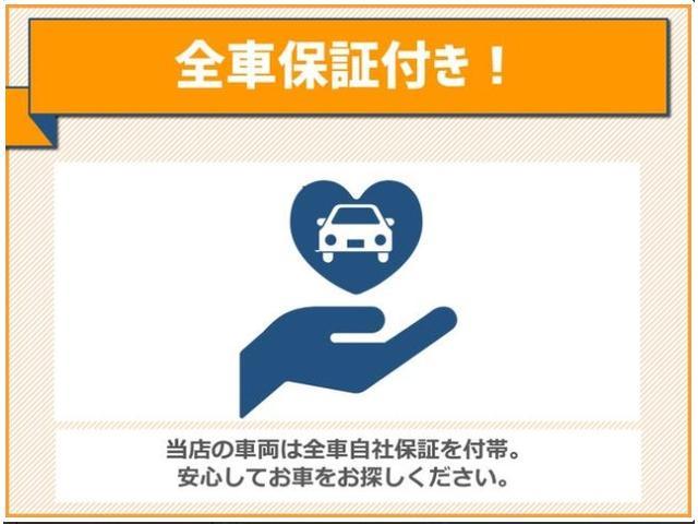X SAIII 届出済未使用車 LEDライト(46枚目)