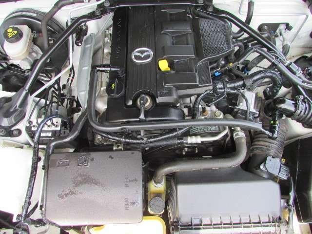 2.0 RS RHT /フルノーマル車(19枚目)