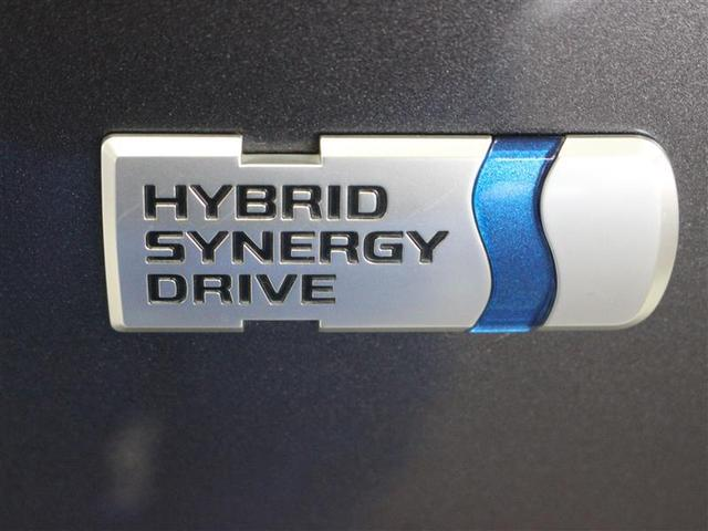 S チューン ブラック フルセグ メモリーナビ DVD再生 バックカメラ ETC LEDヘッドランプ 乗車定員7人 3列シート ワンオーナー(16枚目)