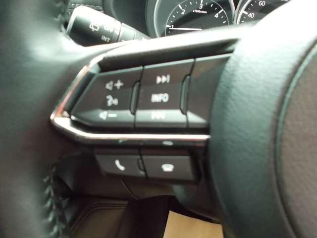 2.2 XD Lパッケージ ディーゼルターボ 4WD メーカーナビ・アラウンドビューモニター(11枚目)