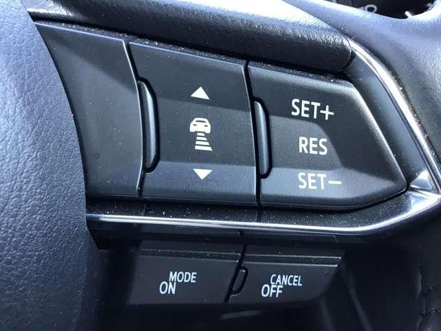 2.0 20S プロアクティブ Sパッケージ 4WD レーダ(9枚目)