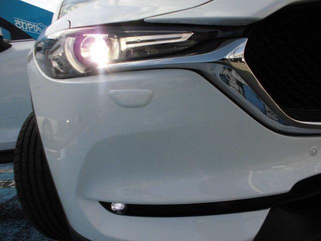 LEDライト&オートライト装着済み車