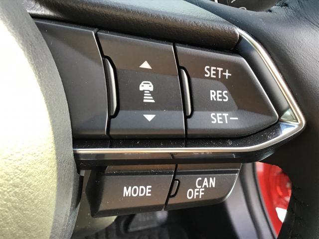 15S Lパッケージ 衝突軽減ブレーキ/白線逸脱警報システム/先行者追従機能/ドライブレコーダー/障害物検知センサー/バックカメラ/ステアリングヒーター/シートヒーター(16枚目)