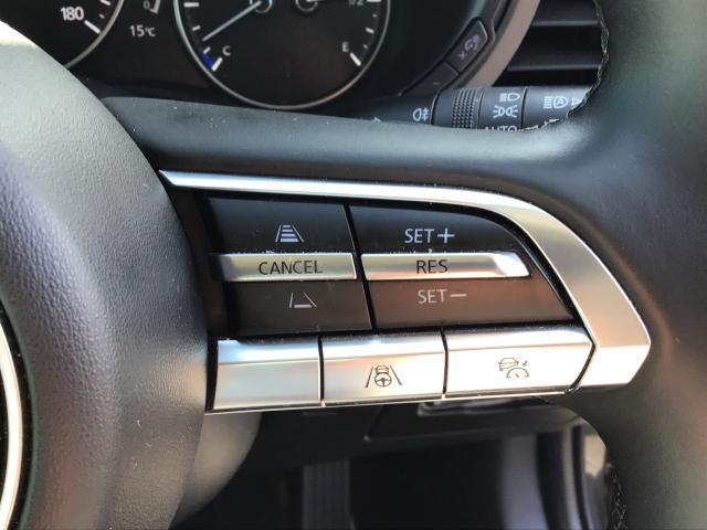 XD LPKG AWD XD LPKG AWD 衝突軽減ブレーキ/白線逸脱警報システム/先行者追従機能/シートヒーター/ステアリングヒーター/障害物検知センサー/360°ビューモニター/BOSEサウンド/ETC車載器(16枚目)