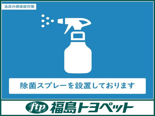 F ジャック フルセグ メモリーナビ DVD再生 電動スライドドア HIDヘッドライト(53枚目)