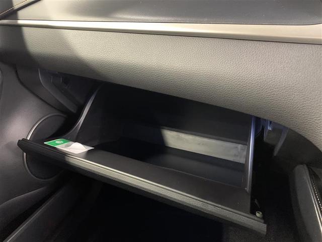 プログレス メタル アンド レザーパッケージ 革シート 4WD フルセグ DVD再生 ミュージックプレイヤー接続可 バックカメラ 衝突被害軽減システム ETC ドラレコ LEDヘッドランプ ワンオーナー(17枚目)