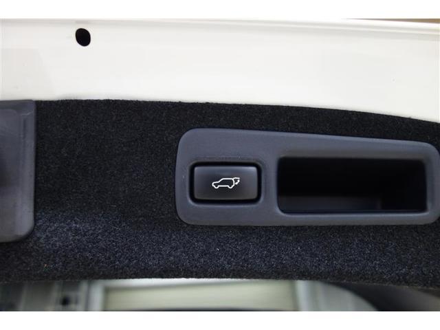 プレミアム アドバンスドパッケージ 4WD バックモニター(17枚目)