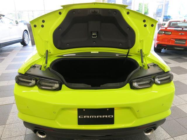 LT RS ショックエディション 国内20台限定車(17枚目)