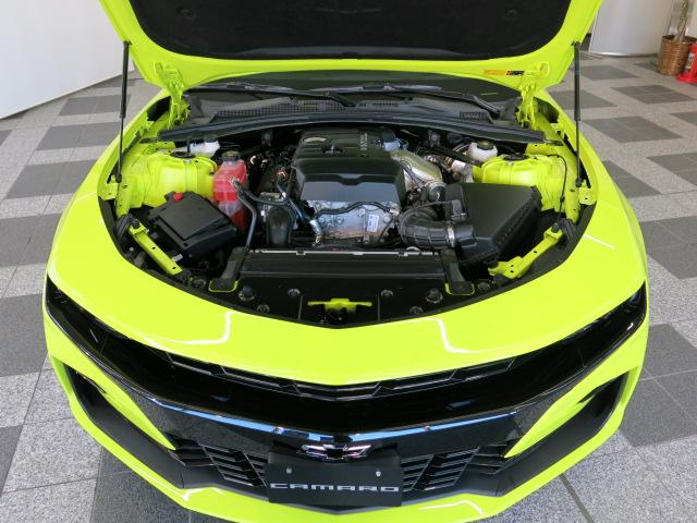 LT RS ショックエディション 国内20台限定車(20枚目)