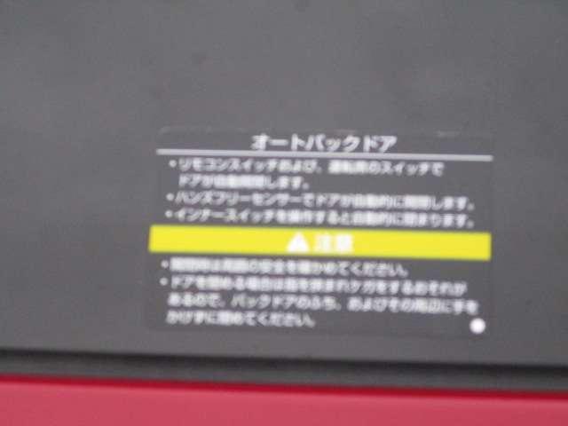 2.0 20X 2列車 4WD メーカーナビ オートバックドア(19枚目)