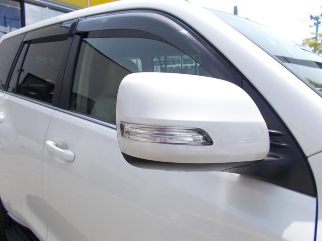 TX Lパッケージ ディーゼル 4WD 1オーナー 禁煙車 ベージュ革シート フルセグナビ バックカメラ(31枚目)