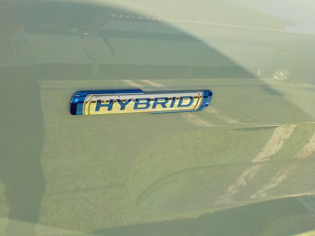HYBRID X(5枚目)