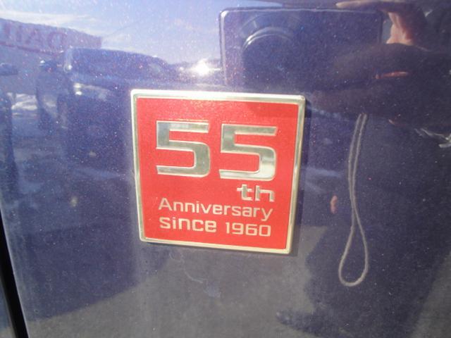 デラックス55thアニバーサリーゴールドエディション4WD(15枚目)