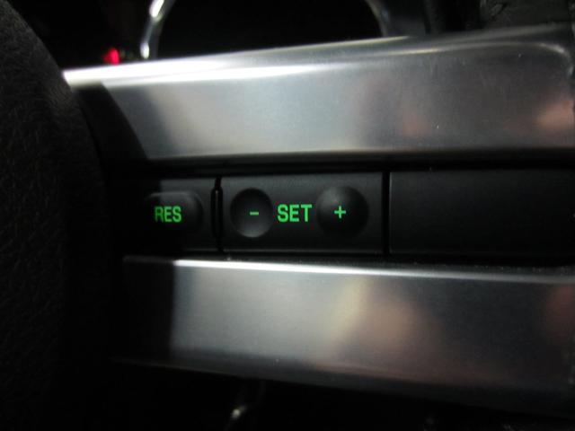 V6 プレミアム 社外HDDナビ フルセグTV 社外セキュリティシステム 純正17インチAW クルーズコントロール バックカメラ ETC キーレス(28枚目)